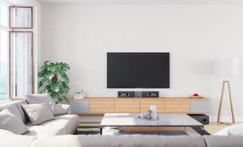 Interior of a modern, bright and airy living room with a plant, television, audio system, coffee table and couch