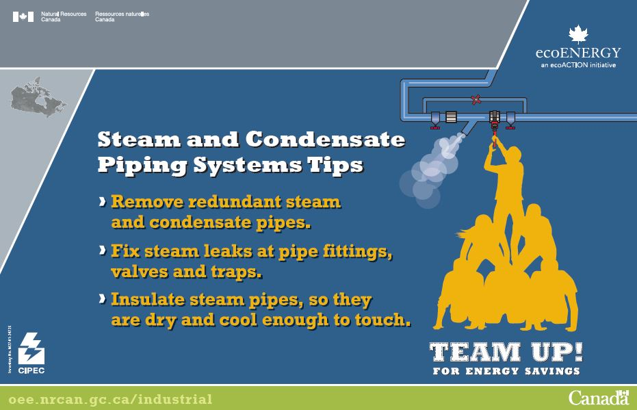 STEAM AND CONDENSATE PIPING SYSTEMS TIPS (POSTER) (MAX 25)