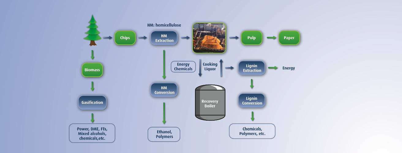 Integrated Forest Biorefinery. Please see text version on this page