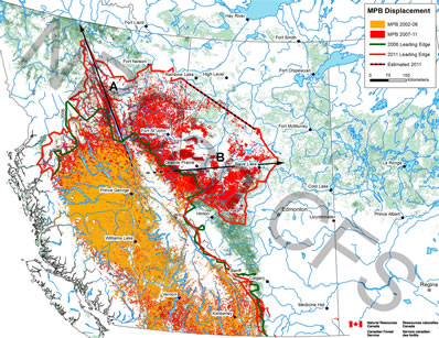 Spread of the mountain pine beetle in British Columbia and Alberta  from 2002-2006 (yellow) to 2007 - 2011 (red).
