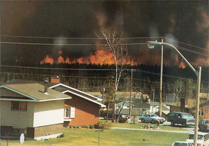 Forest fire in Terrace Bay, Ontario. Photo: Gary Gusol