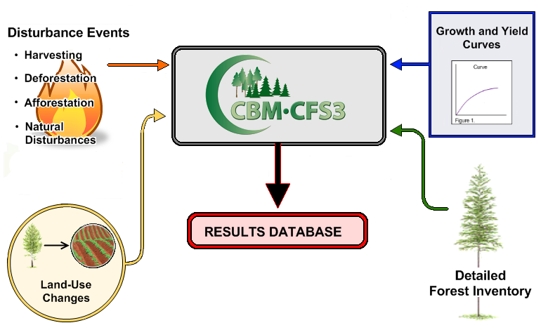 Diagram of the National Forest Carbon Monitoring, Accounting, and Reporting System. Disturbance events , land-use changes, growth and yield curves, and detailed forest inventory are inputs into CBM-CFS3, which has an output into the Results Database.