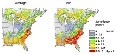 Broad-scale surveillance priorities for Sirex woodwasp in eastern North America. A comparison of the two maps shows that as knowledge about the pest increases (from poor to average), surveillance priorities change.