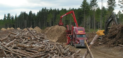 Grinding operation after biomass harvest