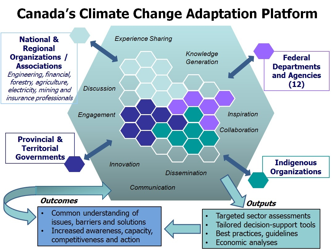 The Adaptation Platform