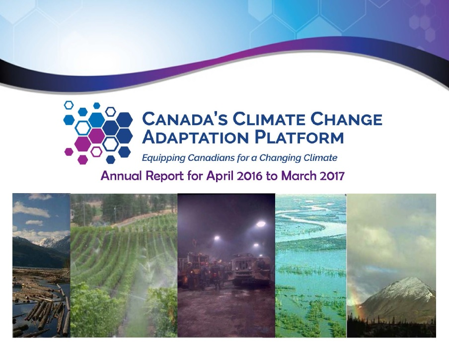 cover of 2017 Adaptation Platform Annual Report