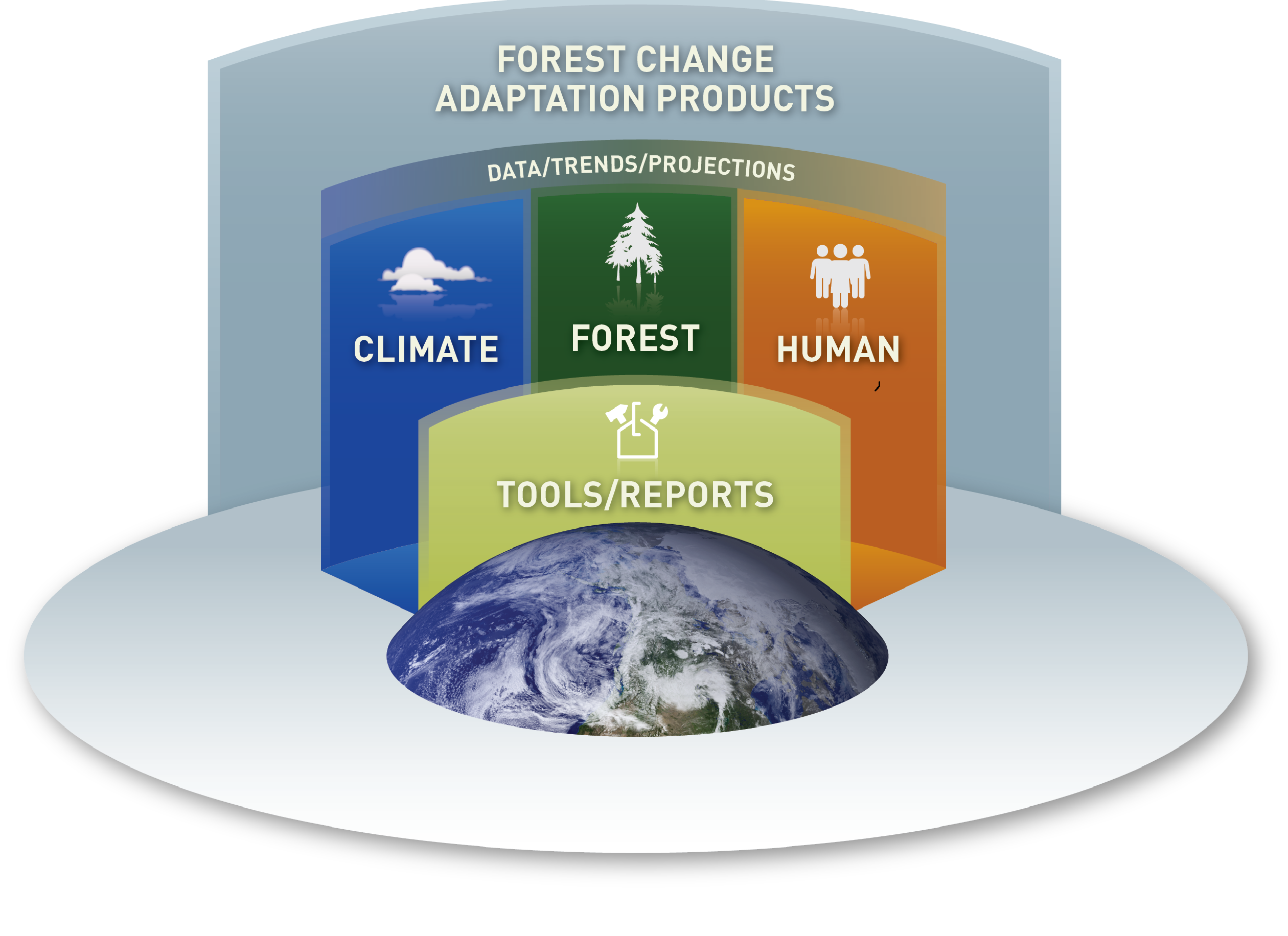 Logo, Forest Change