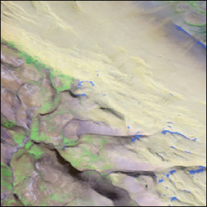 RGB image of the region of interest