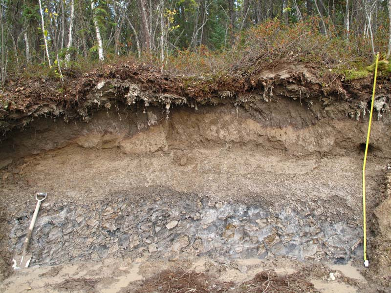 Ice rich ground near Yellowknife NWT (P. Morse Aug. 2014)
