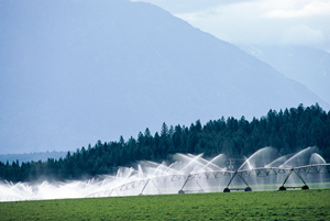 Photo of irrigation system on agricultural land