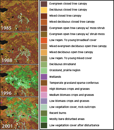 The disruption of ecosystems in the region of Prince Albert National Park from four Landsat images acquired between 1985 and 2001.