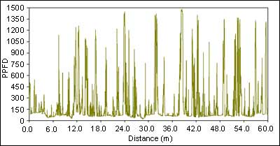 Figure 2: TRAC instrument and an example of a 60m transect in a black spruce stand. Spikes represent sun flecks intensity (PPFD) through gaps in the canopy.