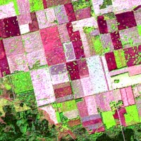 Image of agricultural fields