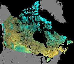 Classification of the land cover of Canada