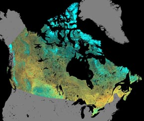 NOAA landcover image mosaic of Canada