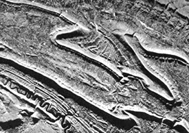Syncline structures on SAR imagery