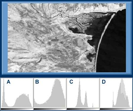 single band satellite image and four histograms