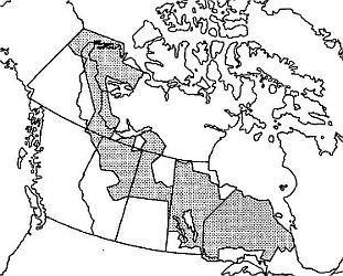 Map of Aerodist coverage in Canada shown in grey.  Covers a diagonal pattern from the Yukon to Ontario