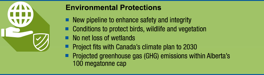 Infographic: Environmental Protections