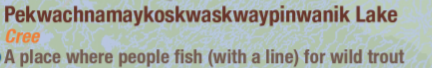 Portion of a map showing the place name Pekwachnamaykoskwaskwaypinwanik Lake. The language is Cree. The meaning is a place where people fish (with a line) for wild trout.