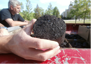 Photo depicting 3-inch biocarbon briquette