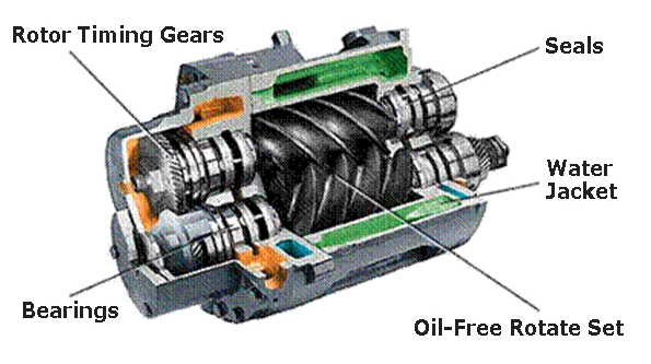 Figure 6 - Cross Section of a Representative Rotary Screw Compressor