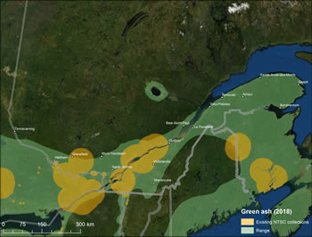 Figure 8 – Map of Quebec showing green ash range and existing seed collections. Legend shows existing NTSC collections and range in 2018.