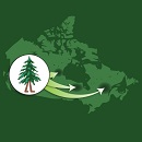 Image showing a map of Canada superimposed by an inset with an icon of a walking tree. From this icon, three arrows depart in different directions pointing to various regions in Canada.