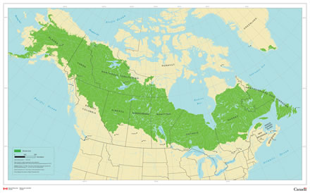 Boreal zone map of North America