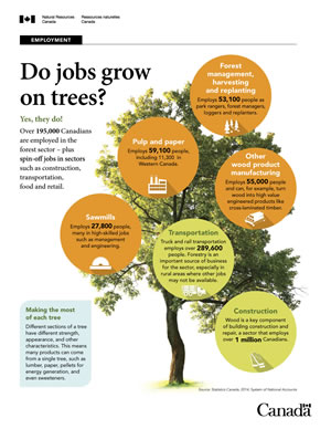 How employment is growing in the forest