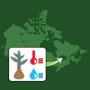 Image showing the map of Canada superimposed by an inset displaying icons of a tree seedling, a rain drop, and a temperature column.
