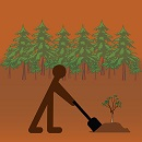 Image showing a forest with an icon of a person planting a tree.