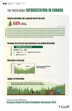 The truth about deforestation in Canada – Infographic