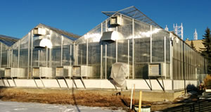 External shot of the NoFC greenhouse. (Photo: Tod Ramsfield)