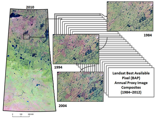 Combining and analyzing a stack of Landsat Best Available Pixel (BAP) annual proxy image composites (1984-2012