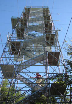 The ecological monitoring tower with a person walking up the stairs.