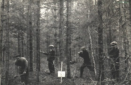 Four students working in the Acadia Research Forest circa 1930.