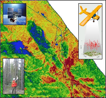 Map of a forest inventory plot. This graphic includes 3 insets that show: 1) an image of a satellite; 2) an image of an aircraft gathering airborne data; 3) a photo of a researcher in the forest.