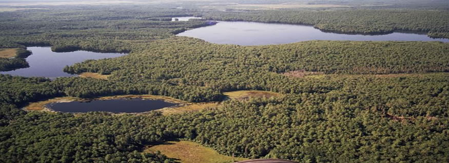 Aerial view of the Petawawa Research Forest, scattered lakes and green forests.