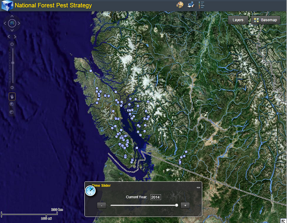 Screen capture of dynamic map for Armillaria ostoyae occurrence for 2014 (zoomed in to the southwest corner of British Columbia). The time slider can be adjusted to view results for different years.