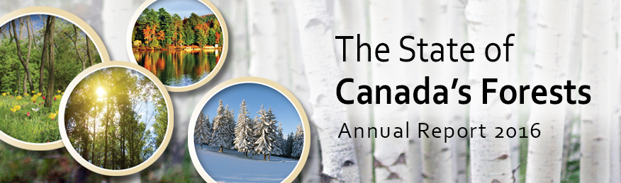 The State of Canada's Forests Annual Report - 2016