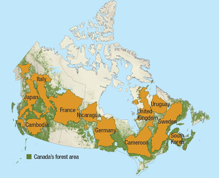How Much Forest Does Canada Have Natural Resources Canada - Germany map natural resources