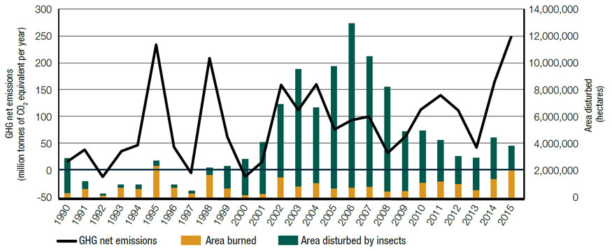 Graph displays (1) the greenhouse gas emissions or removals in Canada's managed forests in million tonnes of carbon dioxide equivalent per year for each year between 1990 and 2015; (2) the area disturbed by fire and by insects in hectares for each year between 1990 and 2015.