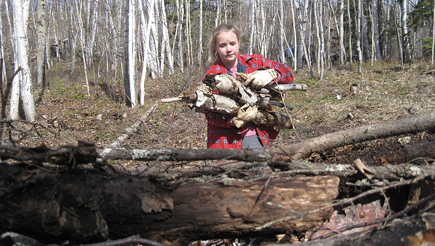 A photo of a young girl with an armful of logs and forest in the background.