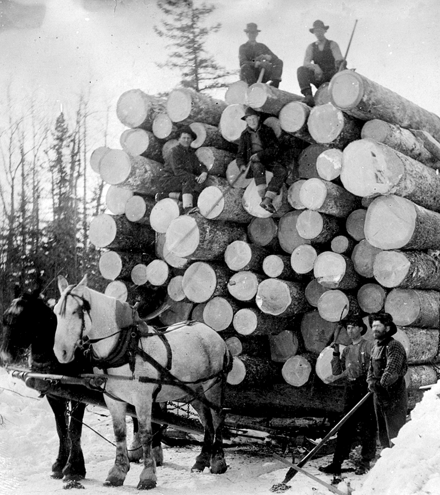 An historical black and white photo showing two horses hitched to a sled piled high with a brag load of cut logs. Four men are sitting on top of the pile of logs and two men are standing in front of the sled.