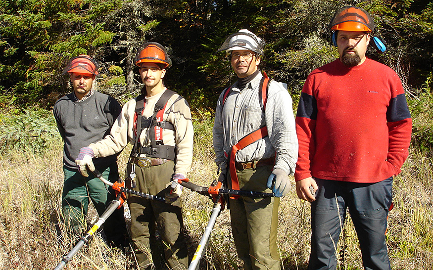 A colour photo of four Indigenous forest workers wearing hard hats and safety equipment. Two are holding brush cutters.
