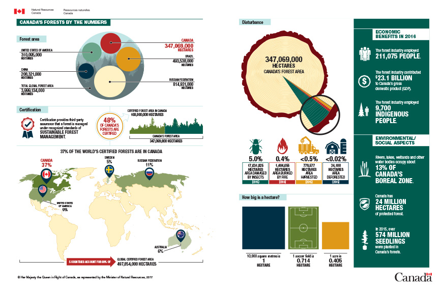 Infographic: Canada's forests by the numbers