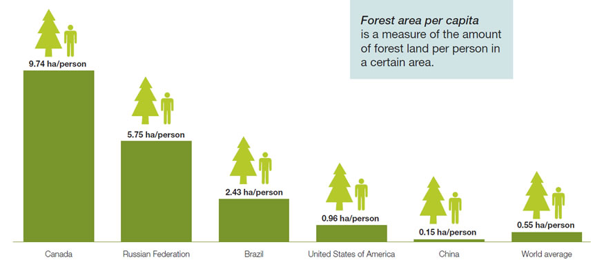 Forest area per capita is a measure of the amount of forest land per person in a certain area.