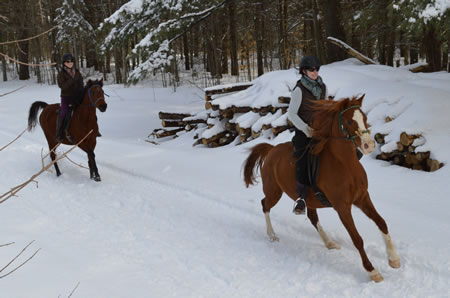 Horses and riders cantering past harvested logs.