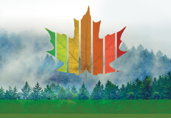 State of Canada's Forests report